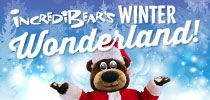Winter Wonderland Offer