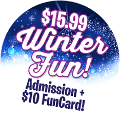 Winter Fun Badge